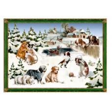 Coppenrath - Gavemærke julekalender med glimmer - Hunde i sneen