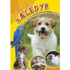 Forlaget Bolden - Billedbog -  Fokus på kæledyr
