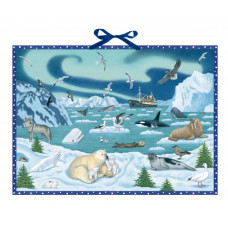 Coppenrath - Gammeldags julekalender med glimmer - Antarktis dyr